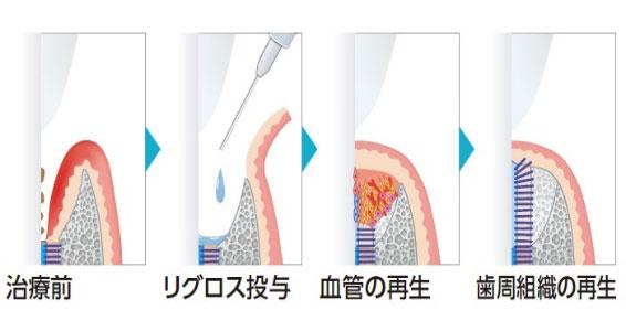 general-dentistry04_6
